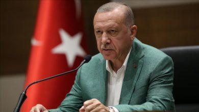 "Photo of قرار هام من الرئيس "" رجب طيب أردوغان"" بخصوص التعليم"