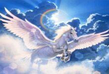 """صورة لماذا ذـ.ـبح نبي الله سليمان الأحصنة المجنحة """"الصافنات الجياد"""" ؟"""
